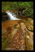 Small Fall Campbranch by TRBPhotographyLLC