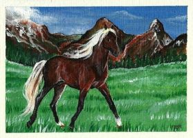 Rocky Mountain ACEO by Fire-n-ash