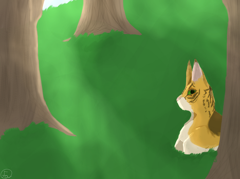 Forest cat by FelisAves