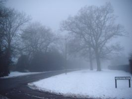 Snow and Fog by Tigzzz