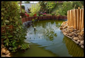 Garden pond by theotherdude
