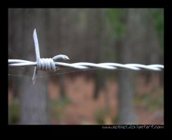 Barbed Wire by nehinei