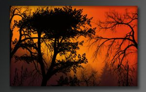 African Sunset by At0mArt