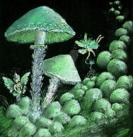 Garden of the Moss Fairies by VivalaVida