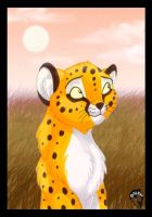 Cheetah by DolphyDolphiana