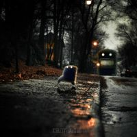 THE BAD LAST HOUSE ON THE LEFT by LEQUARK