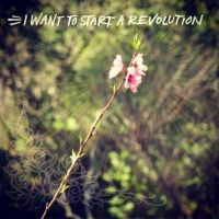 I want to start a revolution by Madylyne