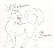 Cloudtail by Kels-Kat