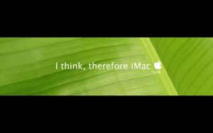 I think, therefore iMac by sking243