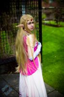 Zelda: Hylian Princess by VandorWolf