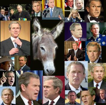 bush collage by commanderzab