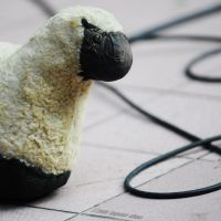 Bobby the sheep by Togusa208