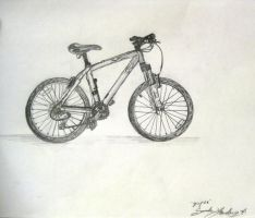 My Bicycle Has Handlebars by BloodBass
