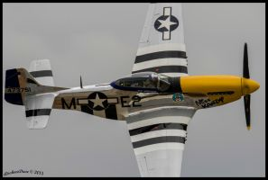 Closeup P-51D 44-73751  N5444V by AirshowDave