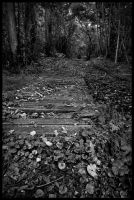 Bridge by grimleyfiendish