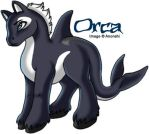 Orca the pony by anonshi