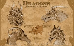 European Dragons -series 1- by DrakainaQueen