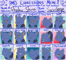 shinku shinx expressions by Appletail