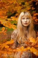 Autumn V by alassea-ancalimon