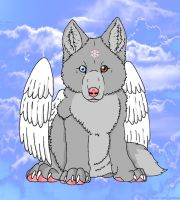 Angel wolf pup by sliverwolf018