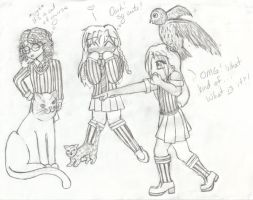 Hogwarts friends and pets by angelcollina