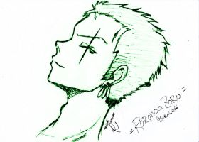 Zoro After 2 Years -Sketch- by arale66