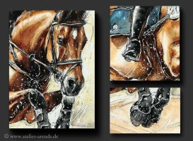 Eventing details by AtelierArends