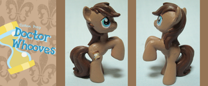 Custom Pony: Doctor Whooves by frostfire14