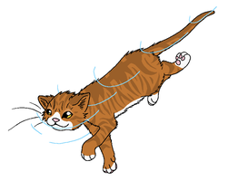 RiverClan - Beetlewhisker by WildpathOfShadowClan