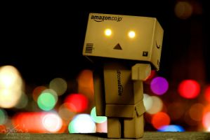 Danbo choose you! by fighteden