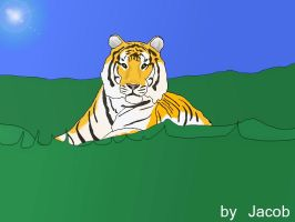 Tiger by artweller24