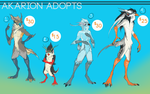 REDO AKARION AUCTION (CLOSED!) by Yuroboros