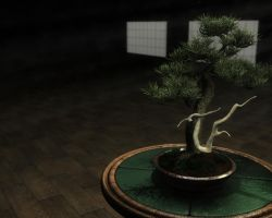 Bonsai by Sirius-2