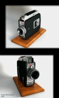 Old Kodak Camera by 3Dapple