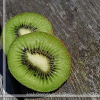 N1374 - Two Kiwi Slices by LeahGreer