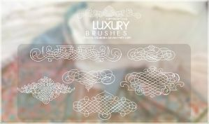 Luxury Brushes by CrystalizedBoon