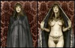 The Blue Veil Diptych by mjbw39
