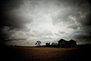 Harvest and Solitude by kylewright