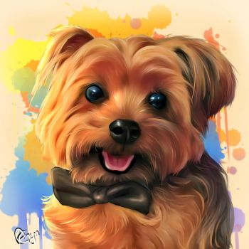 Bentley the yorki by Mythicalpalette