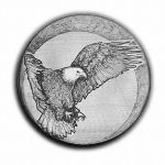 S074-Eagle-Flight-1976 by HiTechArtist