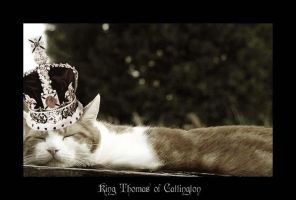 King Thomas of Cattington by Ambient-Lullaby
