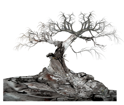 Tree png by mysticmorning