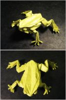 Origami Tree Frog by Lexar-