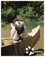 Wishbone Promo Card - Salty Dog by The-Toy-Chest