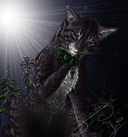 Catmint Picking by Dinofelini