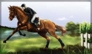 Bolschoi - Steeplechase at Lakeside Race Event by Loliigo