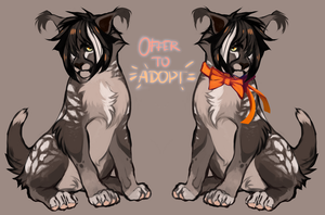 Offer To Adopt by epsiluon