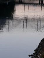 Reflections (Where's Lochness gone?) by Geoperno