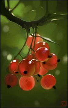 red currants by GaudiBuendia