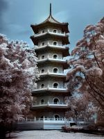 iNfraRed - Chinese Gardens 1 by shin-ex